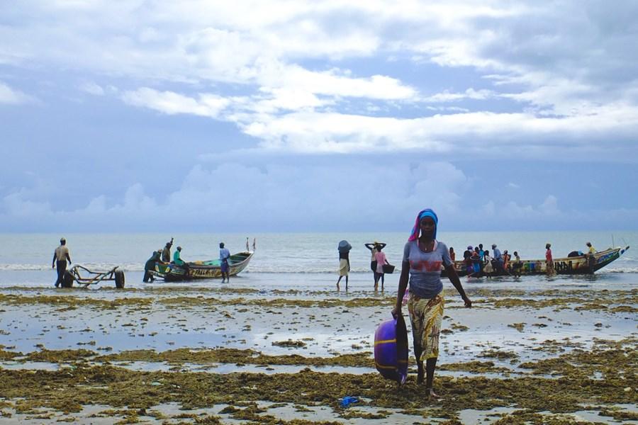 Caroljobe - Lifestyle Gambia Paisaje Pescadores